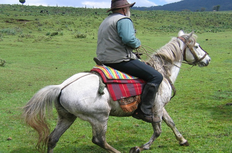 """""""Highlanders canter along century-old paths on their richly caparisoned horses"""" - Lonely Planet"""