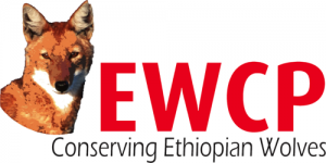 Ethiopian Wolf Conservation Programme