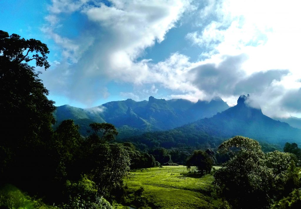 Harenna Forest Bale Mountains Eco-tourism